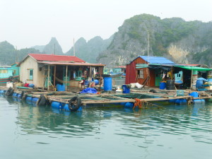 Fishing village homes