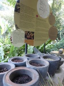 Tropical Spice Garden, Penang Malaysia