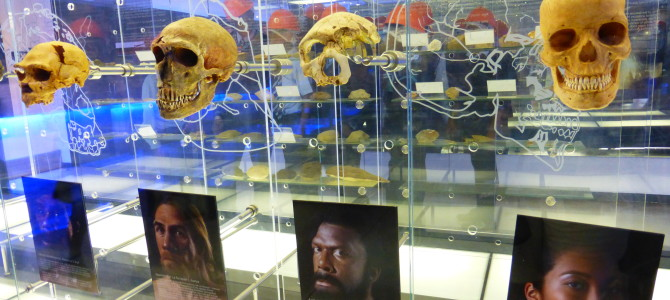 The Cradle Humankind – Maropeng, South Africa