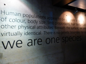 We are all one species, derived from the same ancestry.