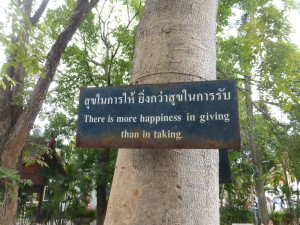 On a tree in Chiang Mai, Thailand